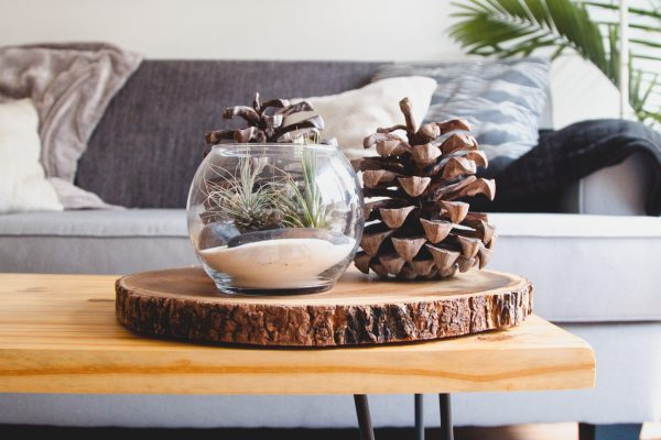 Coffee-Table--Decor